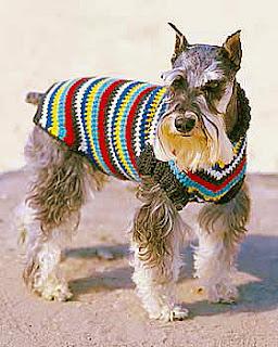 knit easy dog coat crochet flower garden dog coat crochet