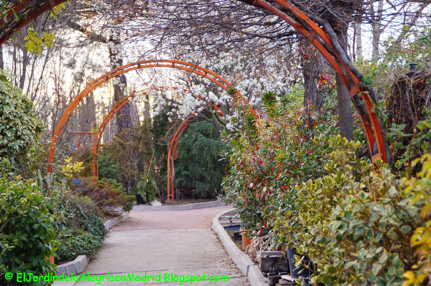 Arcos de madera para jardin nature arco para jardn xx cm for Arcos para jardin