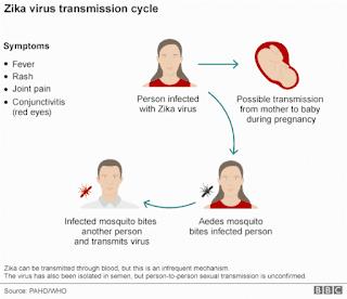 Virus Zika atau Zika Virus Adalah