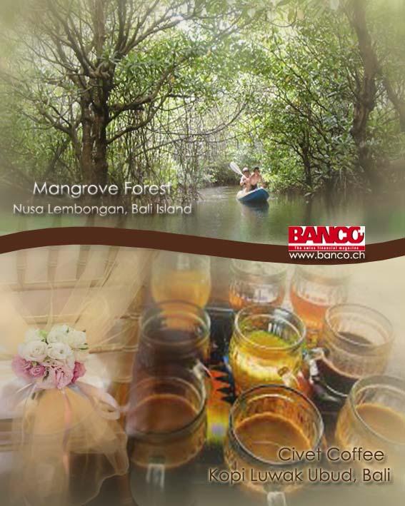 Mangrove tour Nusa Lembongan Island, Klungkung, Bali