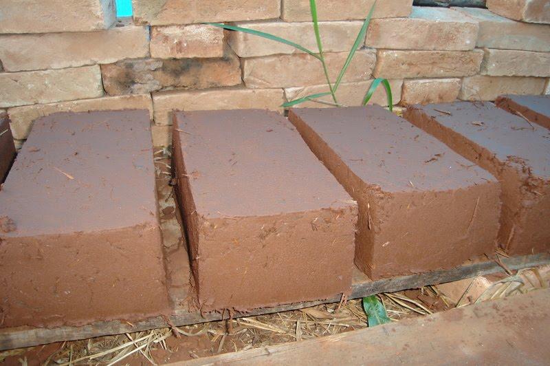 Diente de le n bioconstrucciones el ladrillo de adobe for Construccion de piscinas con ladrillos