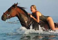 Kuda Binal