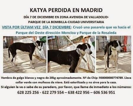 KATYA, PERDIDA EN MADRID