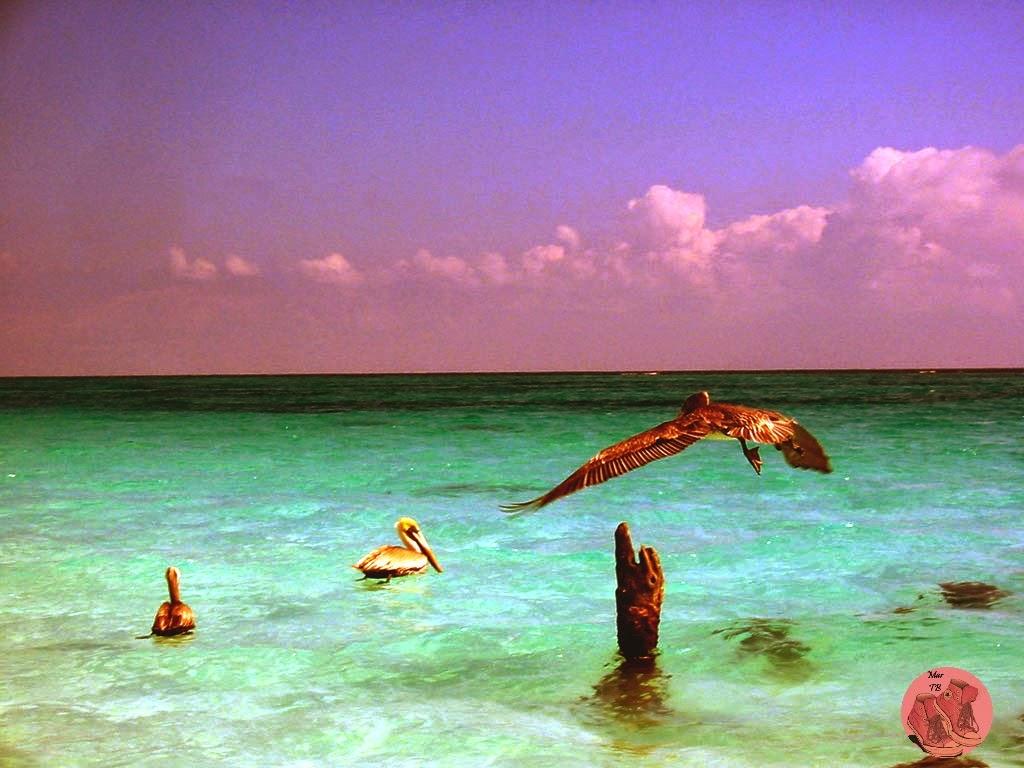 Playa en Tulum