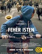 Feher isten (White God) (2014) [Vose]