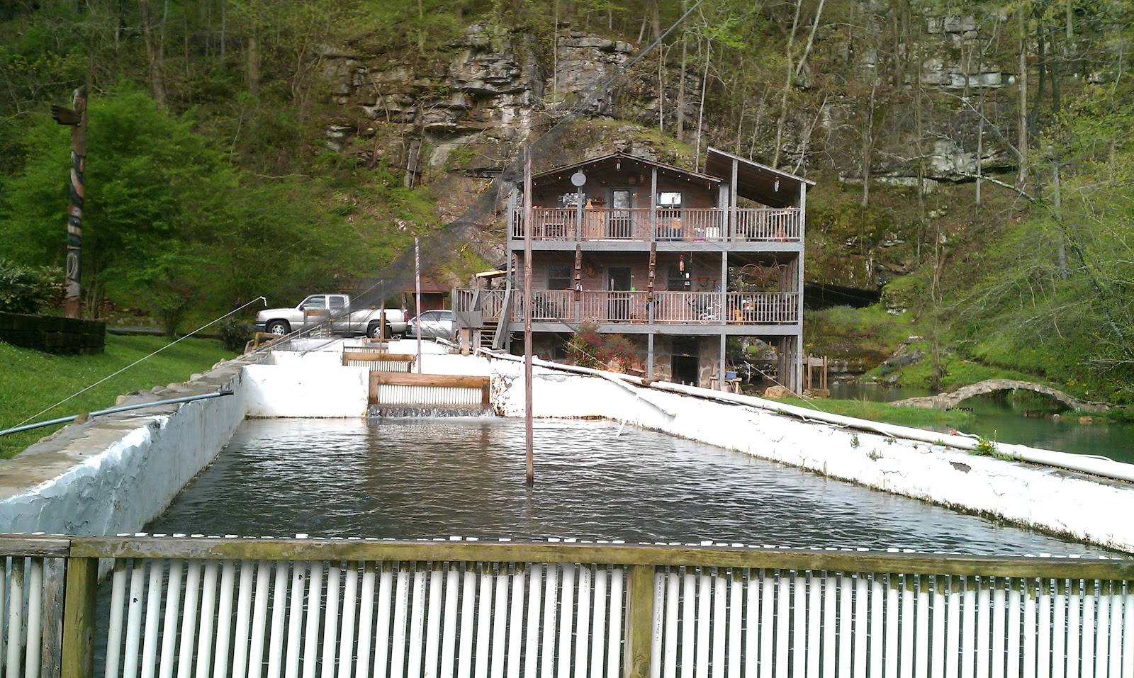 Tnaci field notes a day of trout fishing with steve pickett for Trout farm fishing