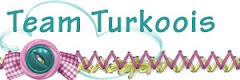 Team Turkoois