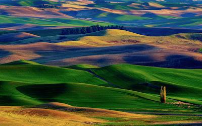 Colinas de colores en la Tuscana, Italia. Colorful Hills