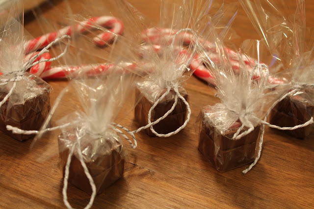 Candy Cane Hot Chocolate Blocks - Christmas Handmade Idea
