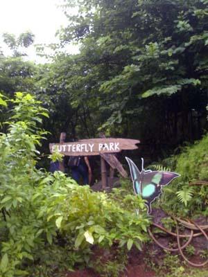 Goa Butterfly Park & Conservatory, Ponda, Goa