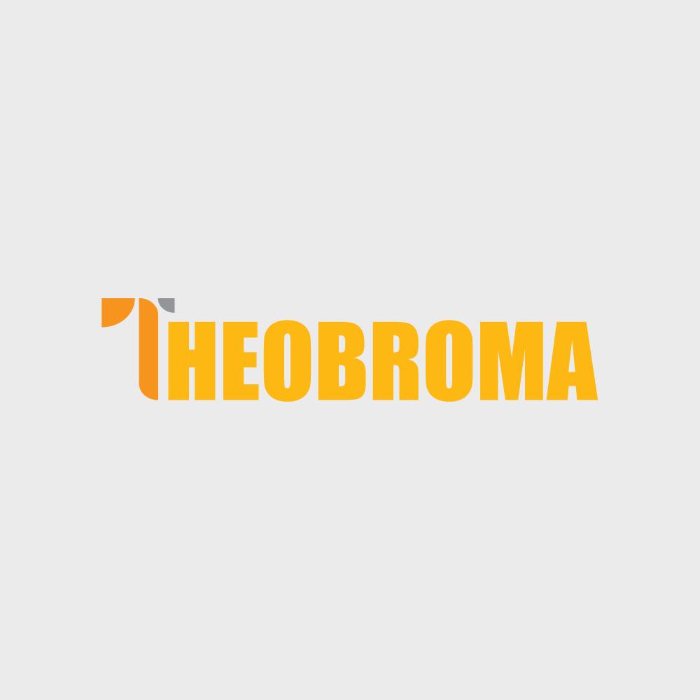 Bursa Kerja di CV. Theobroma