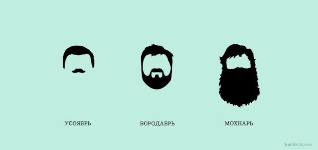 борода и зима