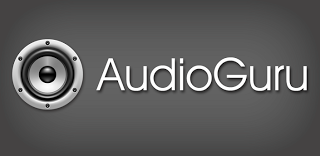 Audioguru Audio Manager Pro Unlocked 1 32 Full Apk Andro Holic Apss
