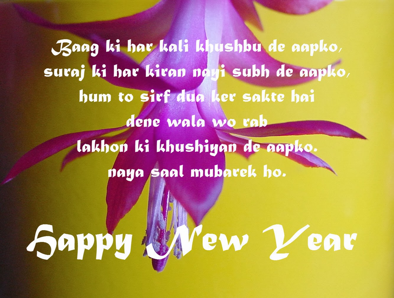 new year wishes for lovers in hindi
