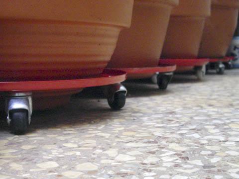 Bons i soluciones itxe maniobrabilidad en las macetas for Maceteros con ruedas de coche