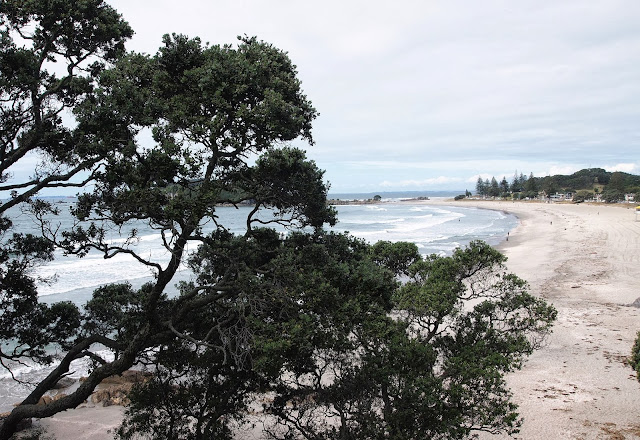 View of the beach from 'The Mount' walking track