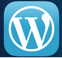 Wordpress Tricks And Tips 2013