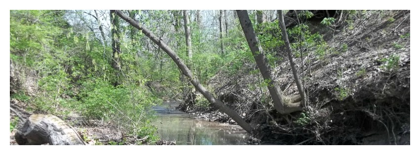 View of Creek in Spring for header Facebook Google+