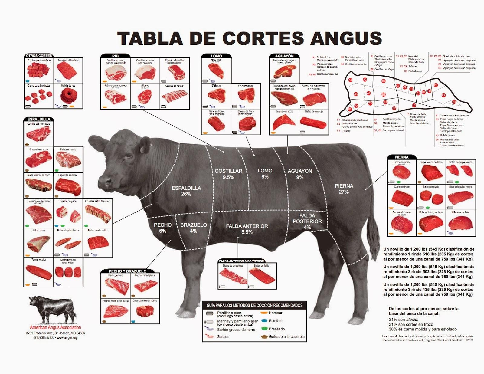 Metástasis en los huesos American Cancer Society - imagenes de animales sin huesos