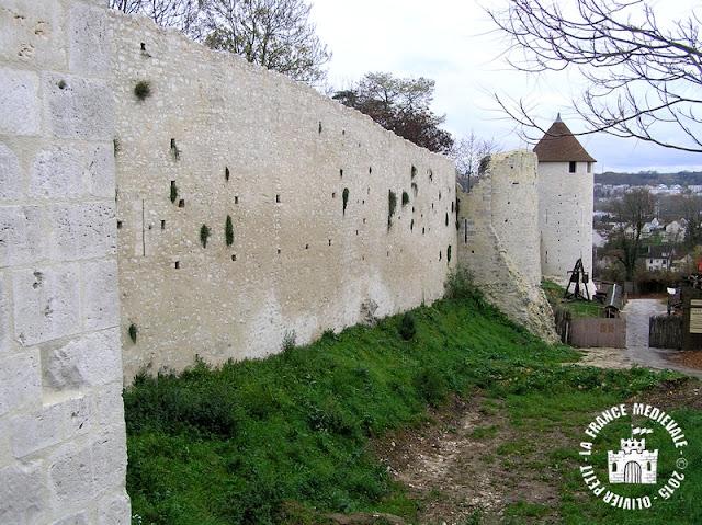 PROVINS (77) - Remparts médiévaux