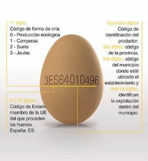GALLINAS Y GALLINEROS: El huevo y toda la información