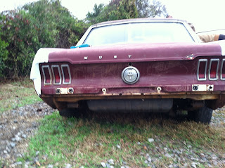 '66 Ford Mustang, classic car, antique car, automobile restoration