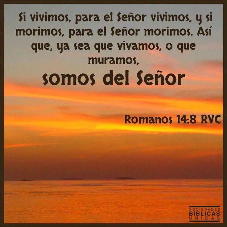 Resultado de imagen de ROMANOS 14, 7-9