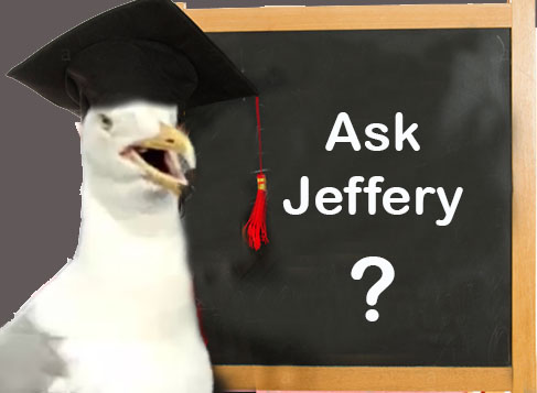 Ask Jeffery!