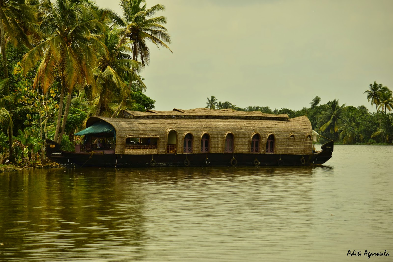 Our Houseboat anchored in the backwaters of Allepey, Kerala