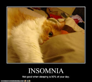 funny_pictures_cat_has_insomnia-funny pictures - funny photos