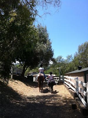 Riding trail in the Dapplegray neighborhood
