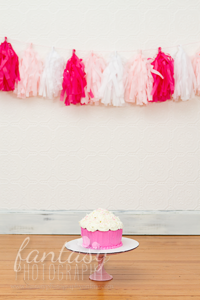 cake smash photographers in winston salem nc | baby photographers winston salem