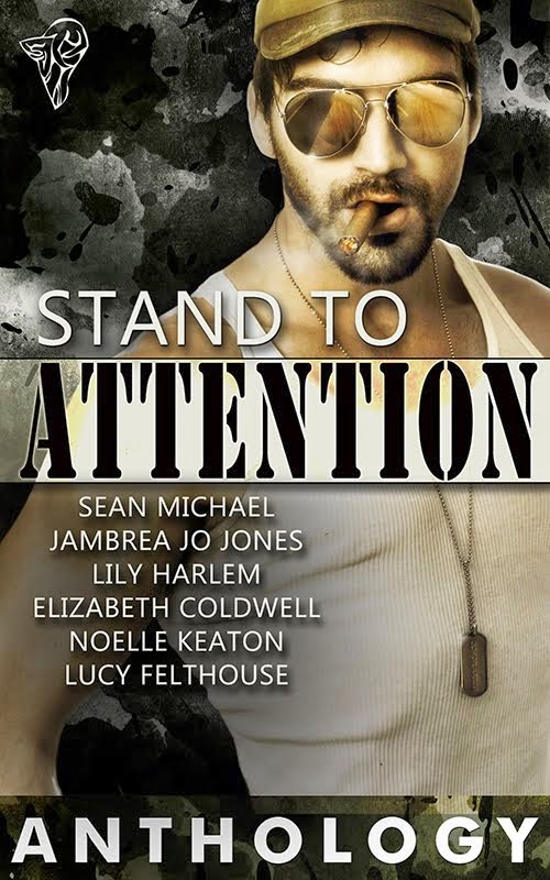Stand To Attention Anthology