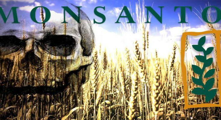 Ο εφιάλτης της Monsanto σκεπάζει την Ευρώπη