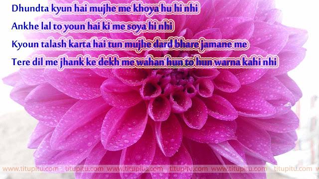 Great-love-shayari-in-Hindi-for-Lover