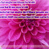 Great love shayari in Hindi for Lover