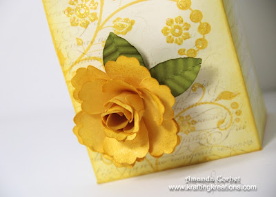 Blossom Punch Rose
