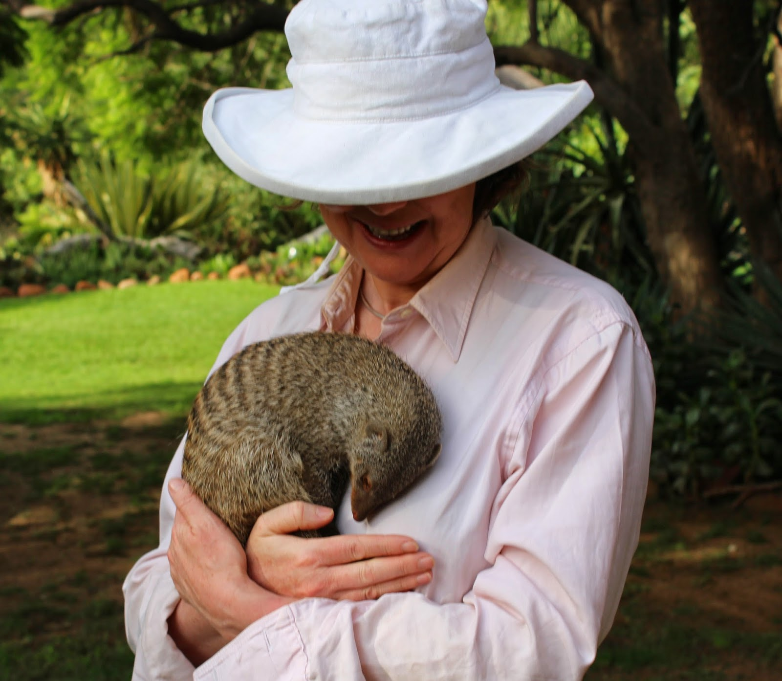 Sophie Neville with a banded mongoose