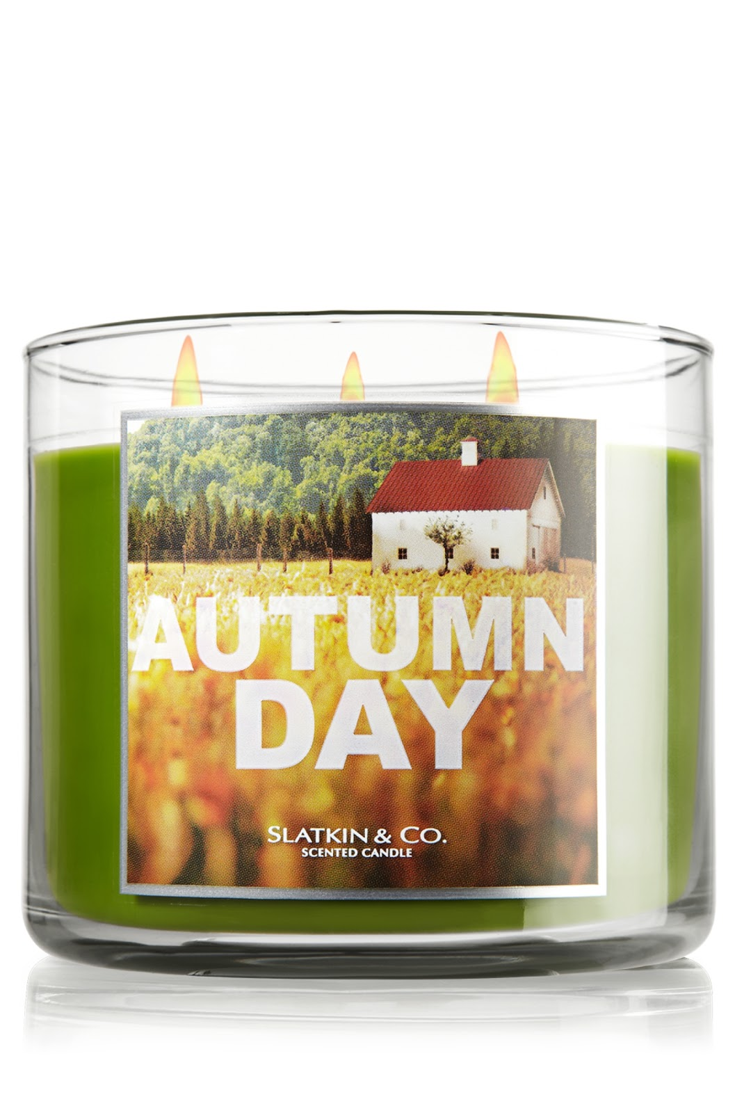 Apartment 54 Review Bath Body Works Candle In Autumn Day
