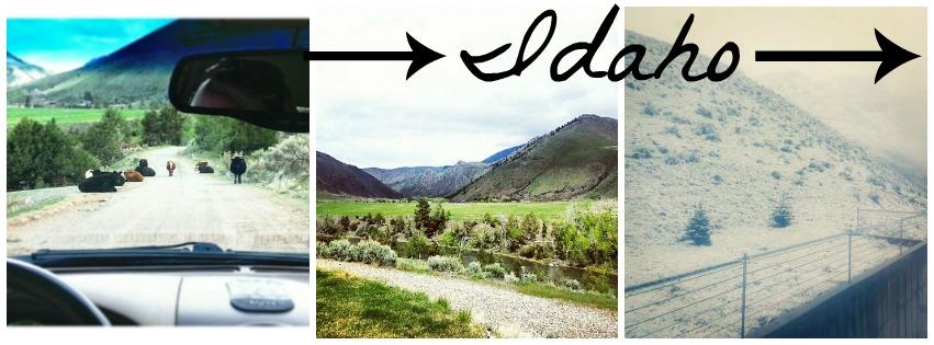idaho+pics.jpg