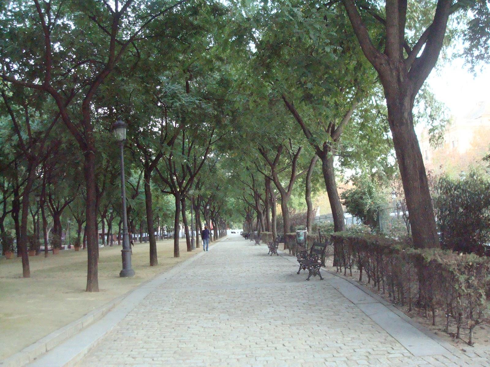 plataforma ciudadana parques y jardines sevilla octubre 2012