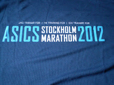 Trainingsshirt voor Stockholm