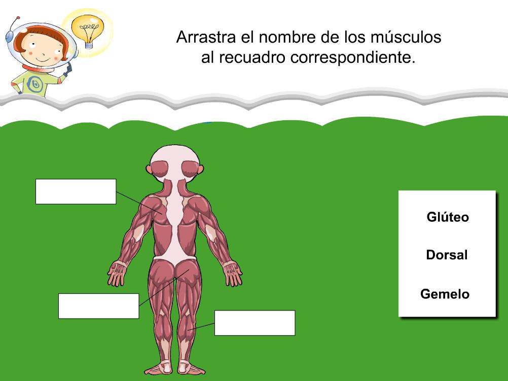 http://www.primerodecarlos.com/SEGUNDO_PRIMARIA/julio/activi_bromera/natura2/3/NATURA2-U3-A4_cas.swf