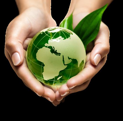Encuesta Medioambiental