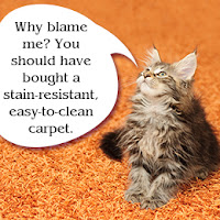 http://dallastx-carpetcleaning.com/dallas-tx-pet-stain-cleaning.html