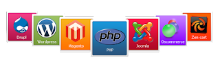 Six Months PHP, SEO, Web Designing Industrial Training in Chandigarh Mohali