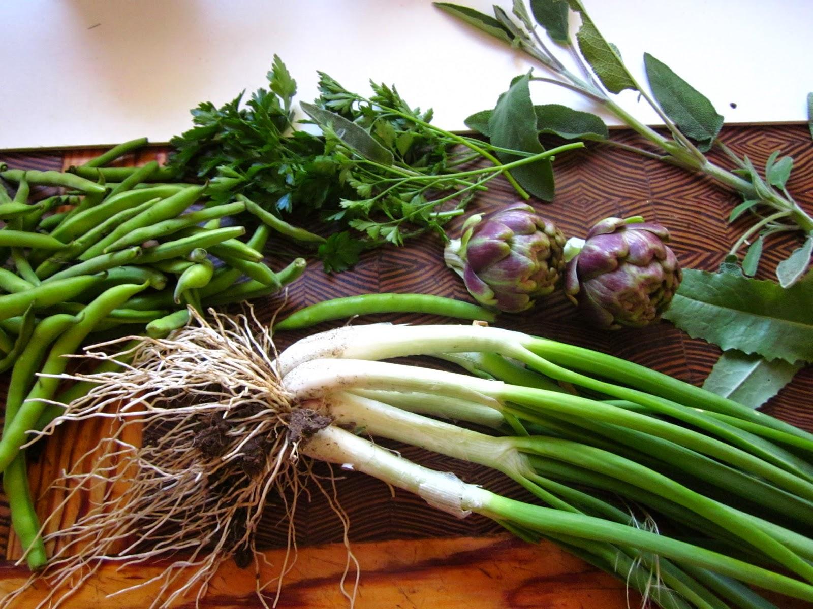 verduras primavera mallorca