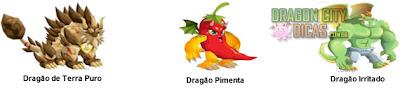 Cruzamentos - Dragão Irritado