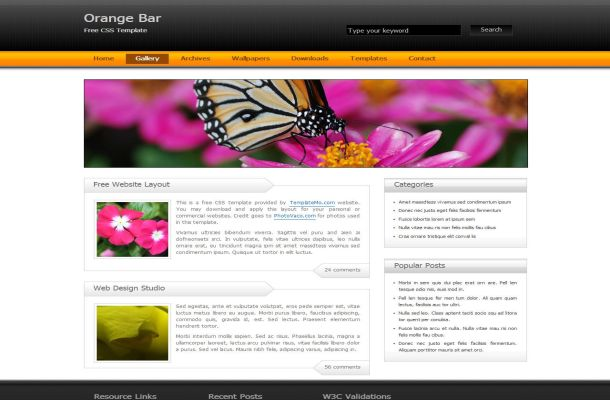 Free CSS Black Orange Business Website Template