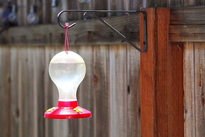 remove from heat and add 1 cup of sugar stir until the sugar dissolves let the mixture cool before adding it to your feeder - Homemade Hummingbird Food